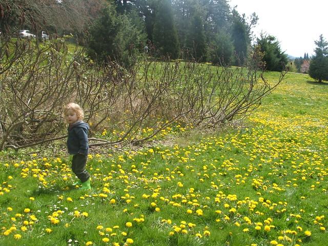 spring2011 221