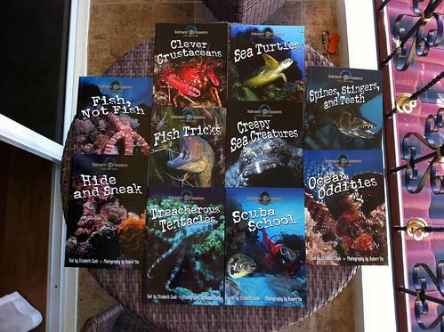 Bob Yin Books