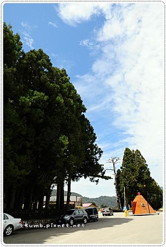 武陵 (24).JPG