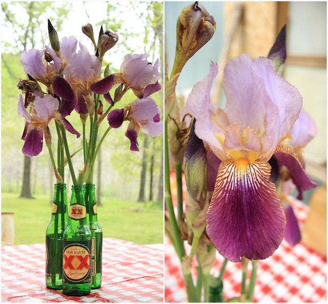 Iris beer bottle collage