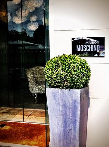 Maison Moschino!!