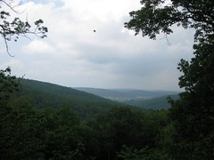 Catoctin Mountain's Blue Ridge Vista