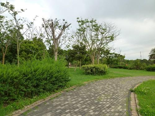 taichung-metropolitan-park-32