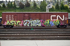 (everkamp) Tags: seattle railroad cn graffiti washington sleep trains etc kc freight boxcars dnb taupe rollingstock rtd railart asic rtdk canadiannationalrailways benching railheads