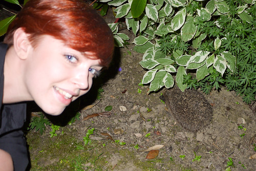 Nat & Hedgehog
