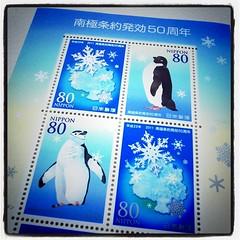 今日の切手3 ペンギン。すーずーしーそー。しかし一週間でこんなに出さなくても(>_<)