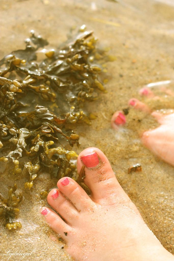 Seaweed toes
