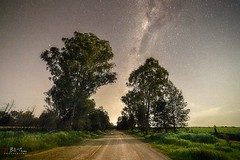 Starry Road. (Bill Thoo) Tags: parkes nsw australia sony a7rii samyang 14mm road milkyway night stars astrophotography longexposure landscape rural country travel ngc