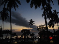 Room with a view, at Donsol, southern Luzon (omnia2070) Tags: philippines donsol southern luzon bicol vitton resort burias passage sibuyan sea palm tree swimming pool bar light red garden trunk coconut branch leaf leaves sunset cloud view roomwithaview