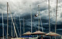 Storm-brewing_DSC1321 (Mel Gray) Tags: lakemacquarie yachts lakemacquarieyachtclub storm weather clouds