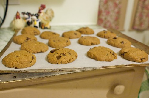 pbgf cookie sheet