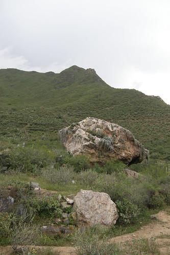 20100327084