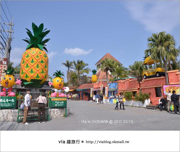 【沖繩自由行】Via帶你玩沖繩~來趟浪漫的初春沖繩旅〈行程篇〉43