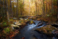 Collins Creek (photogg19) Tags: autumn creek river nikon stream fallcolor arkansas hebersprings d40 littleredriver collinscreek tumblingshoals