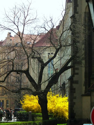 Prague corners
