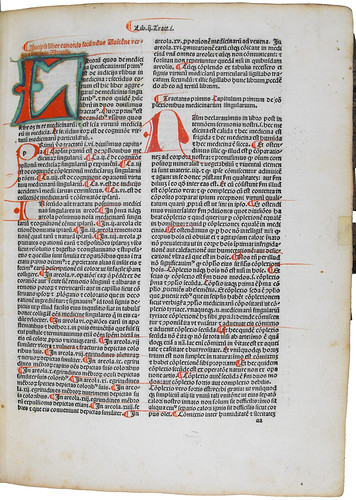 Manuscript decoration in Avicenna: Canon Medicinae