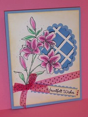 Lily lattice card