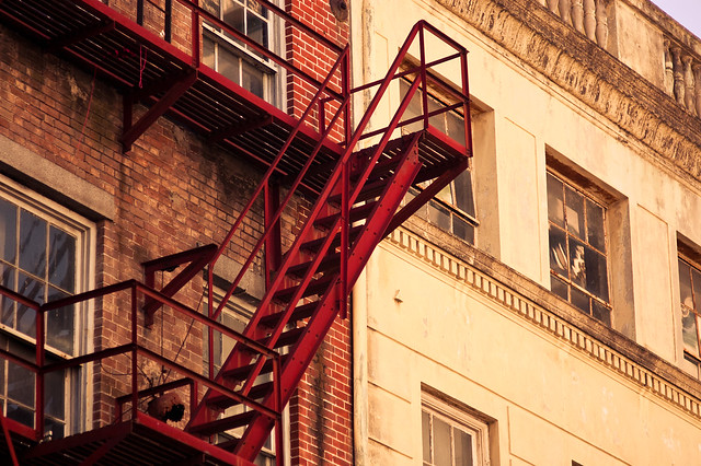 """morning was in the room and pigeons were gargling on the fire escape."""