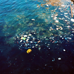 (masaaki miyara) Tags: sea japan canal garbage april  yokosuka   watersurface  hasselblad500cm  2011 kodakektra100