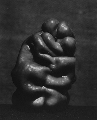 Edward Weston Images - Pepper