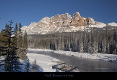 "Castle Mountain in Winter-Banff (Joalhi ""Back in Miami"") Tags: winter canada alberta banff bowriver castlemountain supershot natureselegantshots canon5dmarkii thebestofmimamorsgroups coth5"