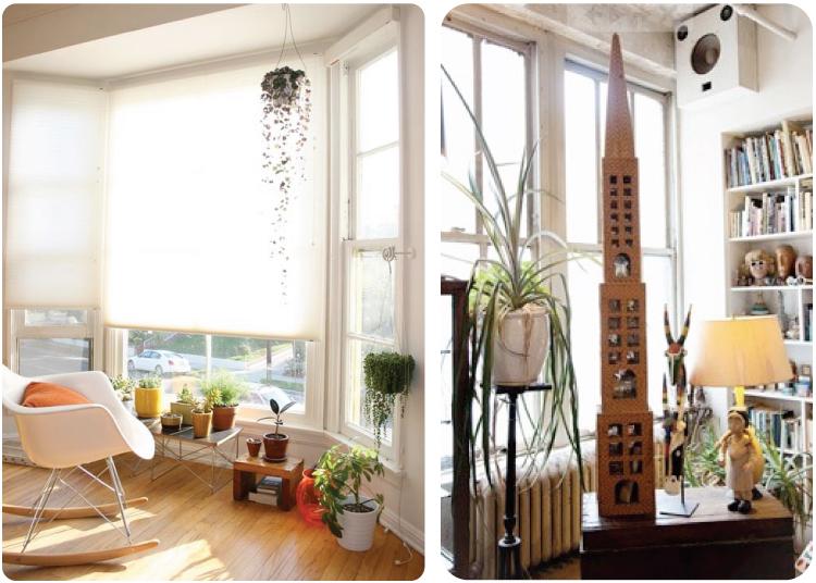 House Plants (5)