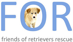 Friends of Retrievers Rescue
