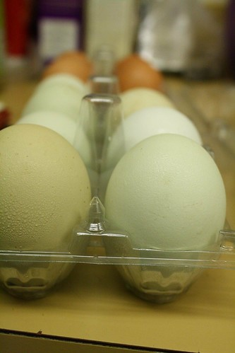 Local eggs, yay ;D