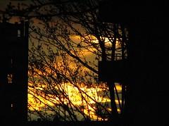 Molten Sky (Marcia Portess) Tags: trees sunset sky night noche arboles silhouettes cielo balconies puestadelsol moltensky westendvancouvercanada