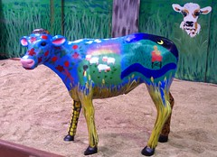 2011 Sydney Royal Easter Show: animals  7 (dominotic) Tags: animal animals rural cow sheep farm sydney llama goat australia bull nsw newsouthwales produce steer agriculture ras homebush theshow artsandcrafts eastershow sydneyroyaleastershow lifestock agriculturalshow citymeetscountry