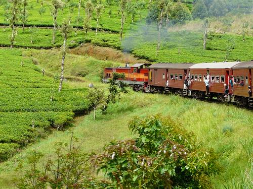 Tren a Nuwara Eliya
