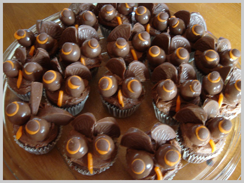 owl-chocolate-cupcakes1