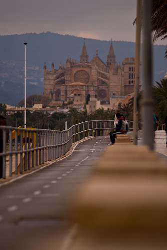 Carril bici de palma de mallorca con la catedral de fondo