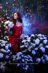 L'azurde Super HQ Pictures /    2011 (Elissa Official Page) Tags: pictures super elissa hq 2012   2011             lazurde