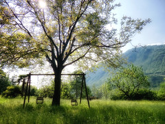 for a while (Bulsti) Tags: italien italy sun tree spring dream swing gras grün sonne bergamo baum frühling gegenlicht isola schaukel traum lovere