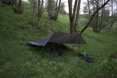 pitched in the woods(2) (tookiebunten) Tags: nikon gear shelter tarp f40 22mm iso1000 hpexif 0067sec alpkit rig7 d3100 1855mmf3556gafsvrdxnikkor walkwithtookie