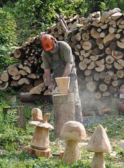 Chainsaw carving (Katy Wrathall) Tags: england woodland spring may herefordshire 2011 beanpoleday moretonwood