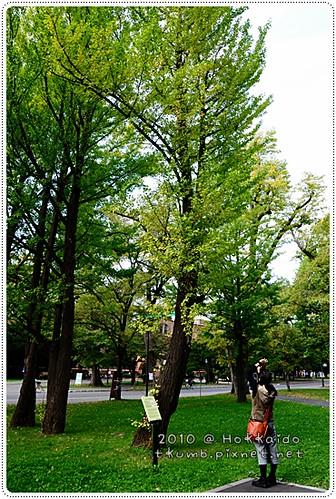 北海道大學 (14).JPG