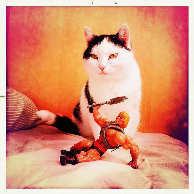 He-Man with cat II