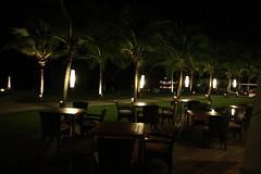 (sensesmaybenumbed) Tags: tree beach night thailand hotel honeymoon palm resort phuket rachayaiisland kohrachayai theracha
