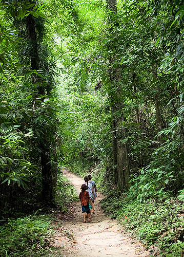 Walking at Sri Phang Nga
