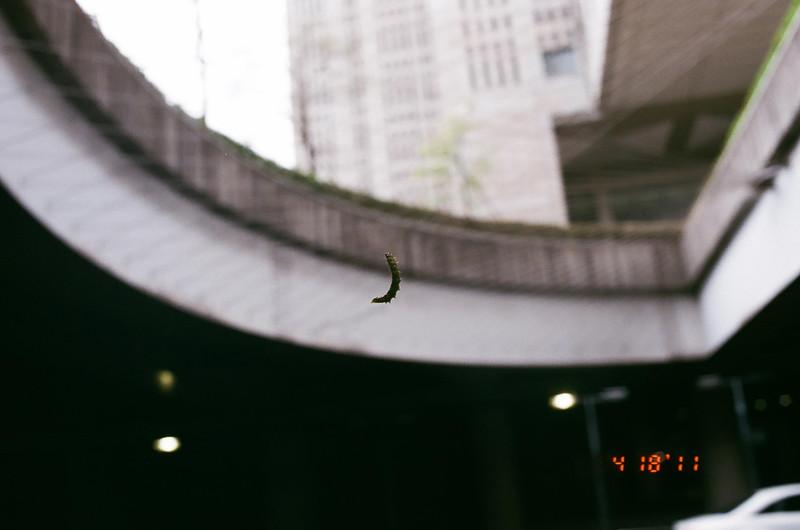 caterpillar_03