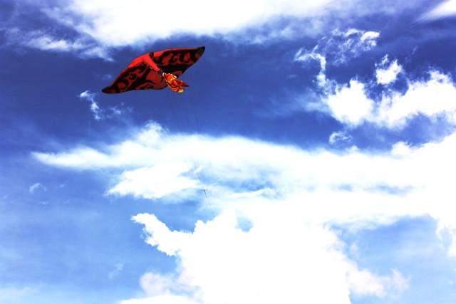 Kites Festival 2011_137
