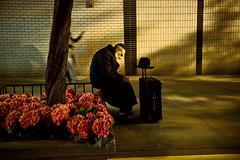 The Longest Journey (She Said Unprintable Things) Tags: nyc art night waiting fine streetphotography luggage journey gothamist resting longest blackhat the borsalino orthodoxjew 6400iso