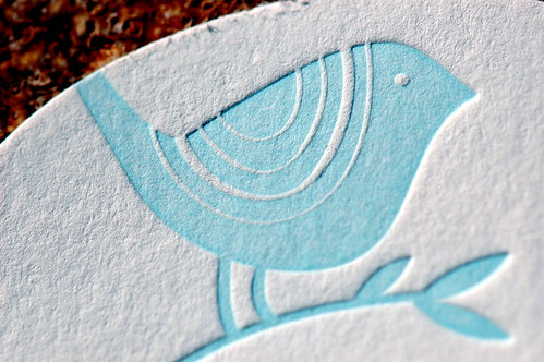 Blue Bird on Textured White Paper by Steve Snodgrass, on Flickr