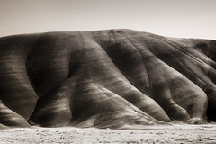 from The Painted Hills (Robert_Brown [bracketed]) Tags: life bw brown white black robert oregon canon john ir fossil day beds painted hills 10d pixel infrared converted lifepixel