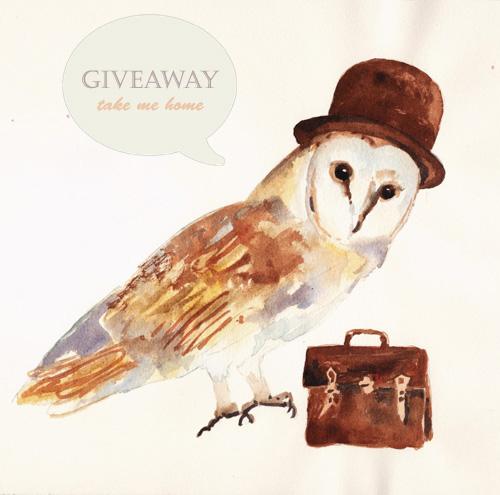 alison-owl1