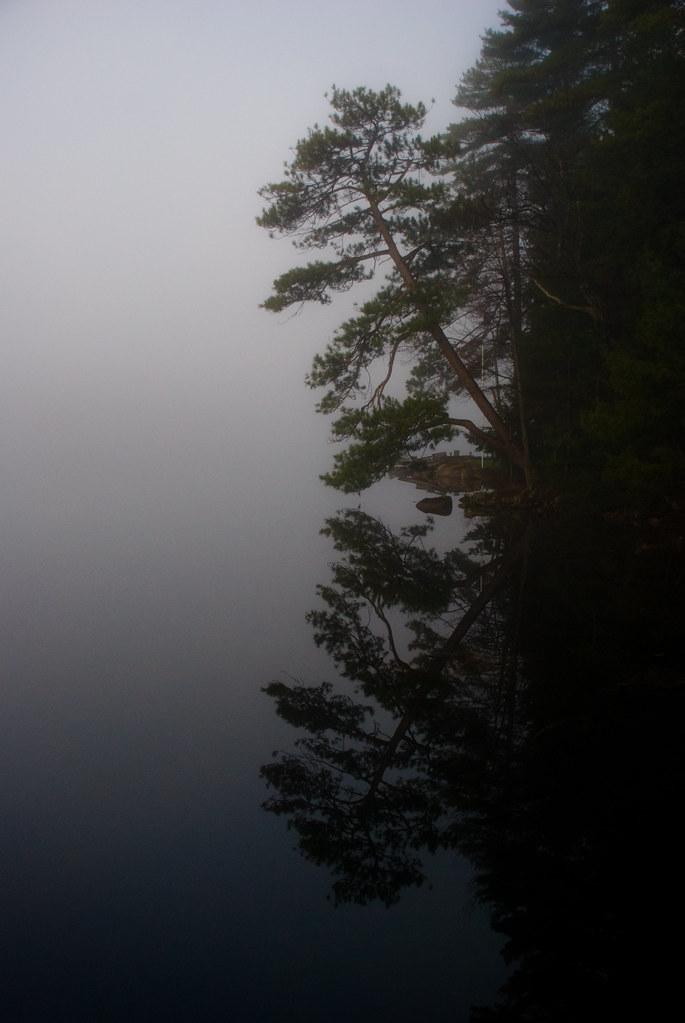 Cottage2011-5474