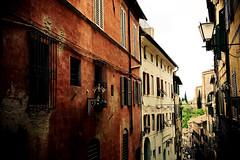 siena (nurpax) Tags: trees italy lamp buildings italia siena