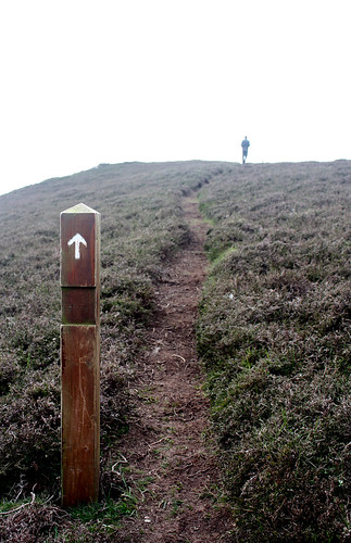 Oa trail